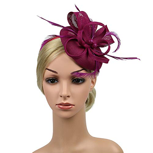 DRESHOW Fascinators Hat Flower Mesh Ribbons Feathers on a Headband and a Clip Tea Party Headwear for Girls and Women (6