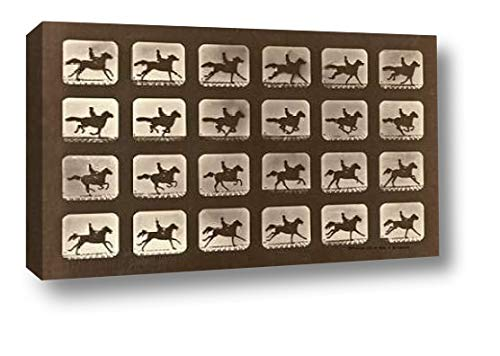 Motion Study: Man Riding A Galloping Horse by Eadweard Muybridge - 6