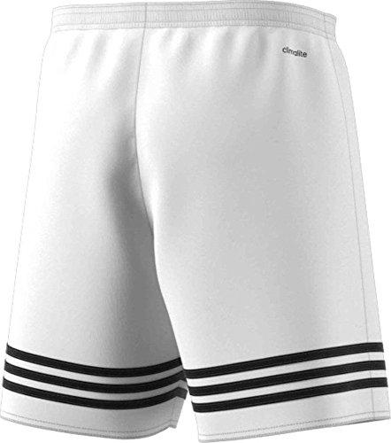 adidas Entrada 14 SHO - Pantalones cortos de fútbol para hombre  Amazon.es   Deportes y aire libre f1b9604d2f22