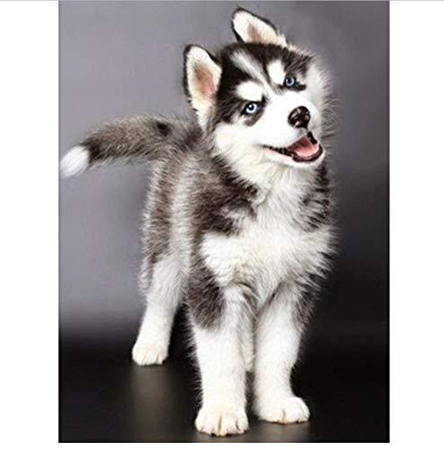 GIZIGI DIY ダイヤモンド刺繍 ハスキー犬 5D ダイヤモンドペインティング 動物 フルダイヤモンド モザイク 3D ラインストーン クロスステッチ キット 40X50 cm フレームレス B07P7J37HF