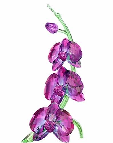 Swarovski Figurine Orchids - 5243561 (Swarovski Orchids)