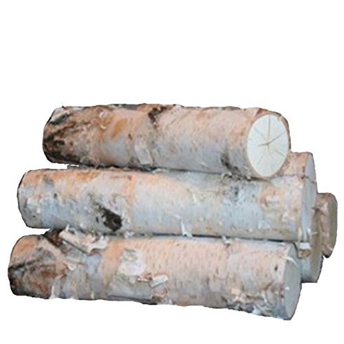 Pine Tree Firewood - Large Birch Fireplace Log Set (5 Logs: 3-5 inch Dia. x 17-18 inch Long)