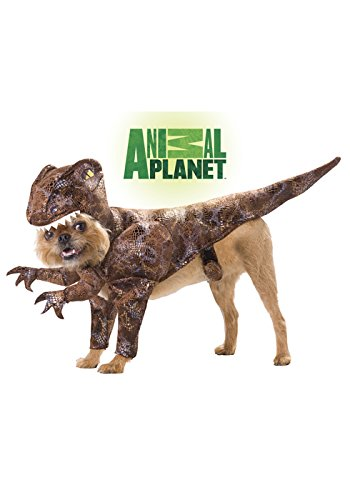 Animal Planet PET20109 Raptor Dog Costume, Small (Animal Planet Raptor Dog Costume)