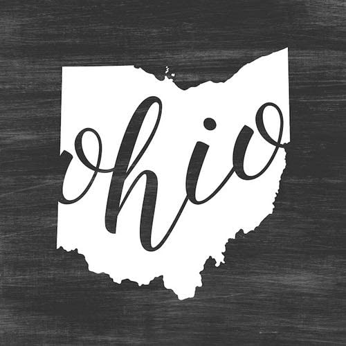 CANVAS ON DEMAND Inner Circle 16 x16 Indoor Polyester Throw Pillow – Home State Typography – Ohio