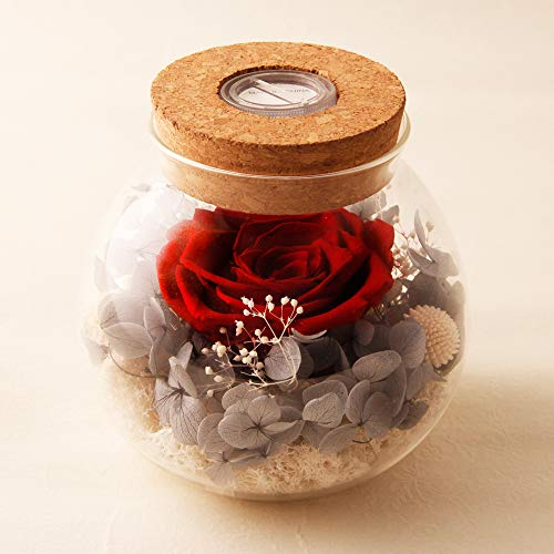 - Preserved by Real Rose with Colorful led Mood light Wishing Bottle Eternal Flowers for Bedroom Party Table Decor Centerpieces Christmas Decorations Crafts Gifts for Women red
