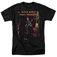 David Bowie is a true music legend, beloved English rock icon, and impossibly stylish fashion symbol. From the psychedelic rock of his earliest work to the transformation into glam superstar Ziggy Stardust to his later dive into electronic mu...