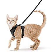 #LightningDeal rabbitgoo Cat Harness and Leash for Walking, Escape Proof Soft Adjustable Vest Harnesses for Medium Large Cats, Easy Control Breathable Pet Safety Jacket with Reflective Strips & 1 Metal Leash Ring