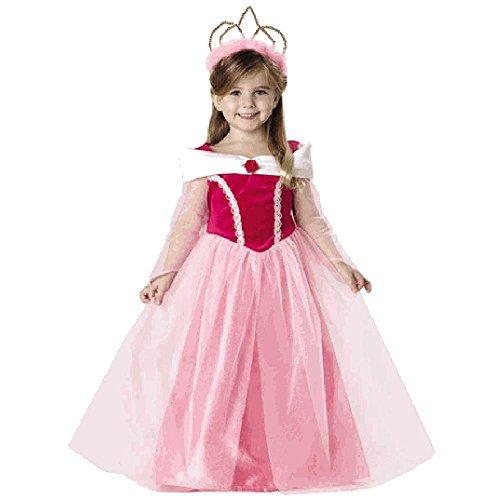 Toddler Sleeping Beauty Dress Halloween Costume