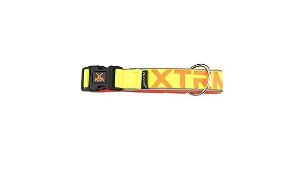 Nayeco collar x-trm neon flash amarillo 38mm x 65-75 cm: Amazon.es ...