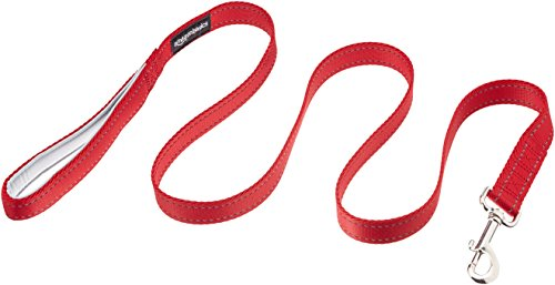 AmazonBasics Padded Handle Dog Leash - 4-Foot, Red