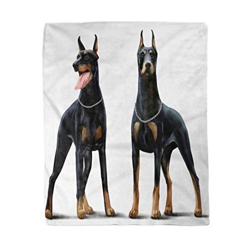 rouihot 60x80 Inches Flannel Throw Blanket Brown Animal Two Dobermans Watercolor Drawing Black Breed Canine Home Decorative Warm Cozy Soft Blanket for Couch Sofa Bed (Information On Doberman Pinchers)