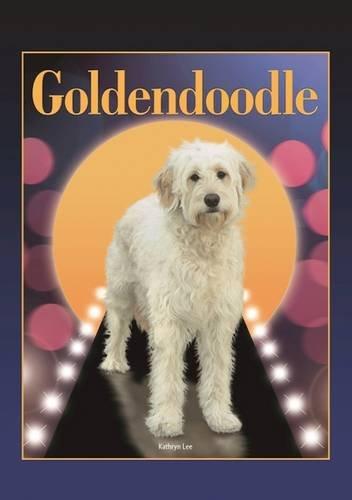 Goldendoodle (Designer Dog (Designer Dog Series)