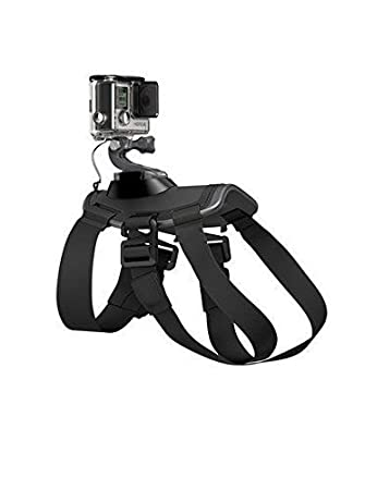 BlueBeach Arnés del Perro para GoPro Hero 1/2/3/3+/4: Amazon.es ...