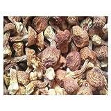Dried Agaricus Blazei Premium Grade 310 Gram