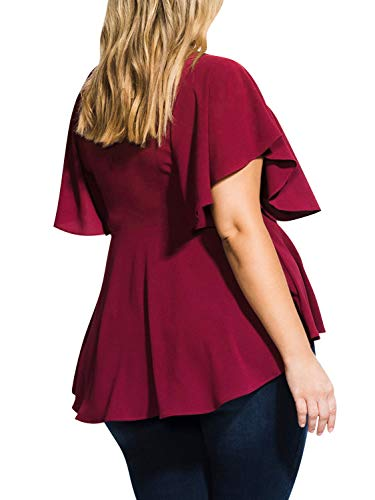 724a87e475404e D Jill Women's Plus Size Tops Casual Ruffle Short Sleeve Scoop Neck Tunic Shirt  Peplum Blouse