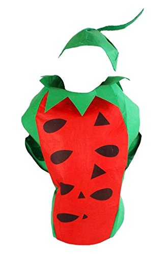 Petitebella Fruit Vegetables Halloween Xmas Costume Set Party Unisex Adult Wear (Watermelon) - Adult Watermelon Costumes
