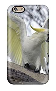 Dream Date YXuLo6572gxLgC Protective Case For Iphone 6(parrots Cockatoos)