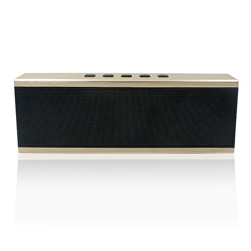 Ecandy Portable Bluetooth Wireless Speaker With FM-radio, Micro SD MP3 Player, 12 hrs Music Streaming & Hands-Free Calling w/ Passive, 5W + 5W 52mm Driver Speakerphone, Built-in Mic, 3.5mm Audio Port, 5000mAh Rechargeable Battery for Indoor & Outdoor Use,Gold