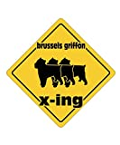 Brussels Griffon X ING XING III - Dogs [ Decorative Crossing Sign Wall Plaque ]