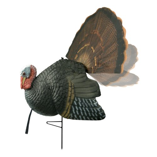 Review Primos Hunting Killer B Turkey Decoy