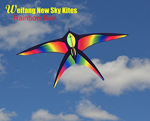 Huge Beginner Kite for Sale, Rainbow Bird 70x40 inch with String, Perfect Kites for Kids, Easy Flyer