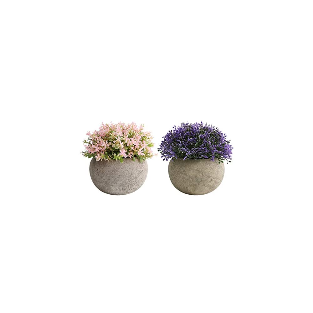 THE BLOOM TIMES 2 PCS Small Fake Plants, Artificial Mini Potted Plants Faux Plants Indoor for Home Farmhouse Bathroom…