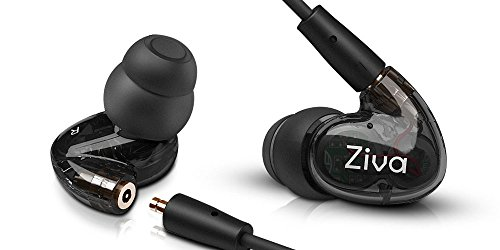 Ziva Indulge Dual Dynamic Driver Detachable Cable Musician's in Ear Monitors, Clear Balck