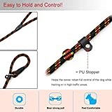 Coolrunner Durable Dog Slip Rope Leash, 5 FT Dog