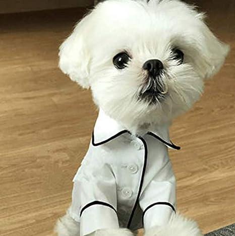 VIDOO Mascotas Pijamas Perro Trajes Ropa para Perro Teddy ...
