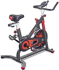 VIGBODY Exercise Bike Indoor Cycling Bicycle