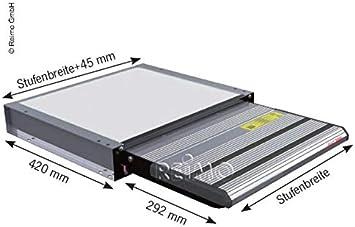 Desconocido Escalera electrico 12 V Project 2000 peldaño 70 cm: Amazon.es: Coche y moto