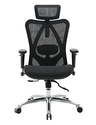 Sihoo Chair