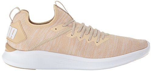 clearance outlet locations Puma Men's Ignite Flash Evoknit Sneaker Pebble-whisper White-puma White big sale online Z2zkZ
