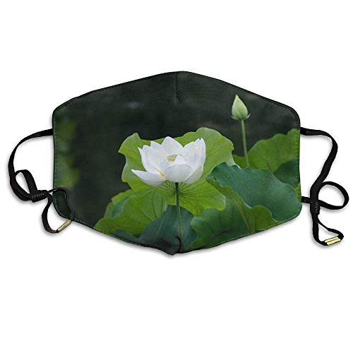 White Lotus Flower Meaning Symbolism Anti Dust Breathable Face Mouth Mask for Man Woman 7.09