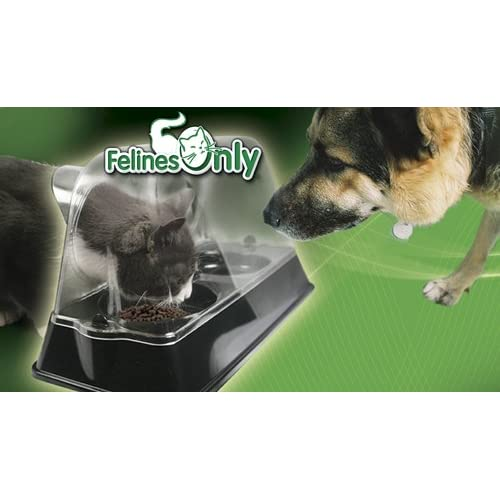Felines Only - the Purrrfect Cat Dish - Veterinarian Designed Cat Feeding Bowl that Keeps Dogs Out of the Cat Food