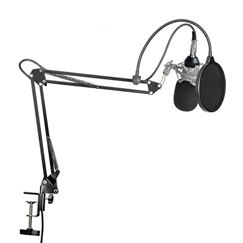 LESHP Professional Broadcasting Recording Microphone