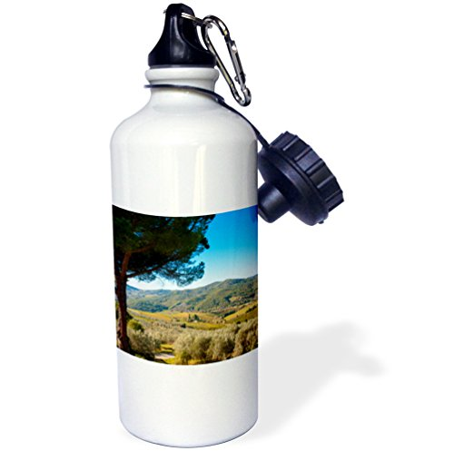 In Tuscany Chianti Greve (3dRose Danita Delimont - Tuscany - Vineyards and olive groves, Greve in Chianti, Tuscany, Italy - 21 oz Sports Water Bottle (wb_249328_1))