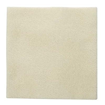 Biatain Alginate Wound Dressing, Sterile, Fast-Gelling, 4 x 4 Inch 3710 (Box of 10)