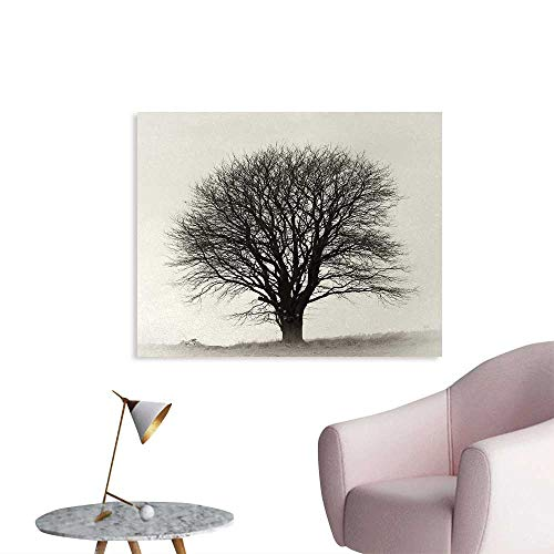 Tudouhoho Black and White Funny Poster Lonely Tree in Field with Many Leafless Branches Countryside Vintage Wall Sticker Decals Ivory Dark Grey W36 xL24