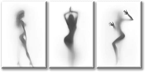 3 Panels Modern Abstract Art Painting for Home Decor Sexy Nude Woman Painting Framed Canvas Wall Art Naked Girl in The Shower Hazy Shadow Picture Living Room Artwork Gift Pieces