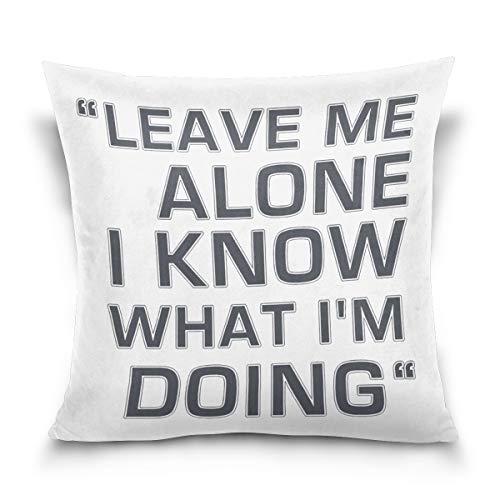 Aibileen Kimi Raikkonen Leave Me Alone Funny Graphic Sarcastic Decorative Cotton Throw Pillow Case for Sofa -