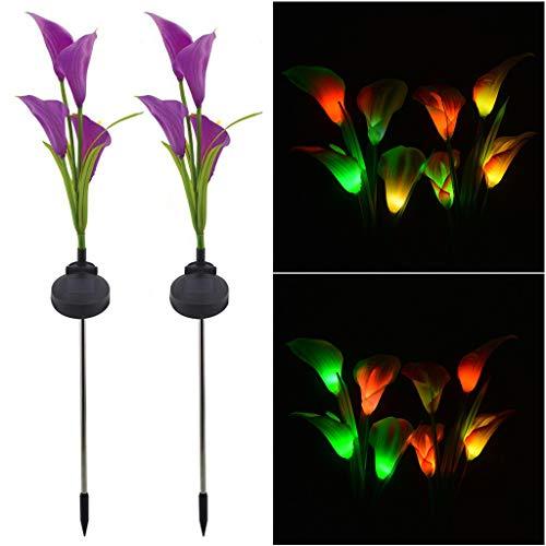 (Gotian Solar Garden Lights Multi-Color Calla Lily Flower Light Outdoor Decoration 2Pcs,Lights Artificial Flowers (B) (D))