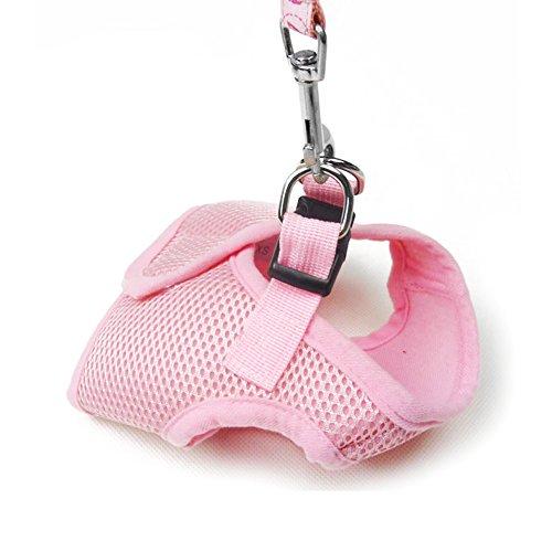Laisse Coton Chat m Contever® Animaux Gilet Pour shirt Taille T Vêtement Harnais leopard Rose En Chien xR04qYBR