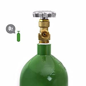 GHP CGA200 Valve 20-Cubic Feet 18.25″H Portable Steel Cylinder Oxygen Cylinder Tank