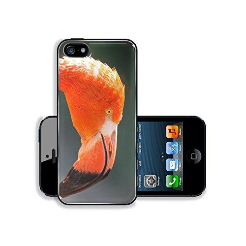 luxlady-premium-samsung-galaxy-s5-aluminium-snap-case-closeups-of-red-flamingos-phoenicopterus-ruber