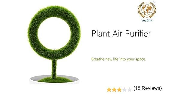 VeeDInt Stylist Purificador de Aire de Planta silenciosa para el ...