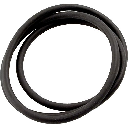 Jandy Zodiac Laars R0462700 Tank Top O-Ring Replacement for CS Series (Jandy Zodiac Top)