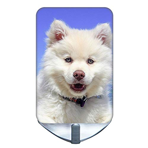 (Use On Ornament Hooks (Set Of 10) With Samoyed Dog Child Protection Oxidation-Resisting Steel)