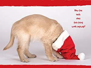 First Christmas Golden Retriever Christmas Cards: Amazon.co.uk ...