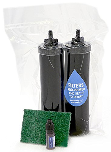 2 Black Berkey Elements, Professionally Pre-Primed with Free Test and Clean Kit Included. by Pure Berkey